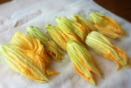 how to prep squash blossoms
