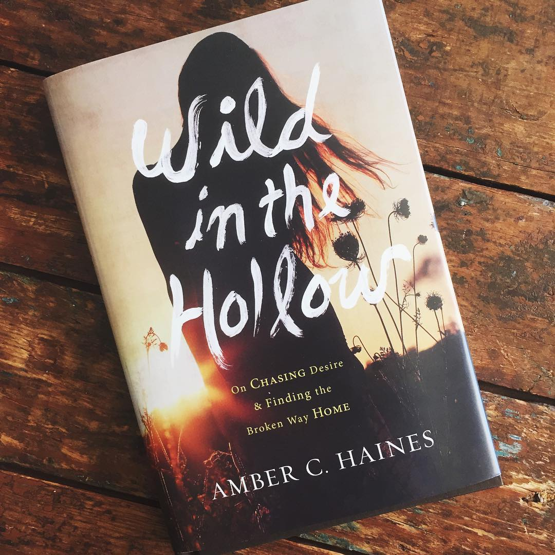 Wild in the Hollow by Amber Haines