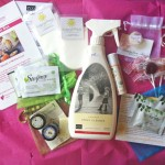 October Ecocentric Mom Box Review