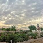 Agritopia Community Garden