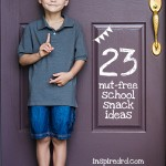 23 Nut-Free Snack Ideas for School from inspiredrd.com