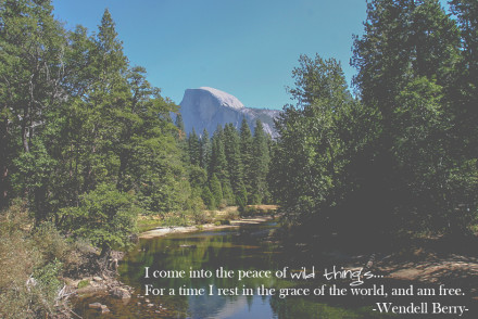 The Peace of Wild Things - Wendell Berry | InspiredRD.com