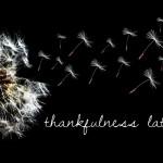 Thankfulness Lately   InspiredRD.com