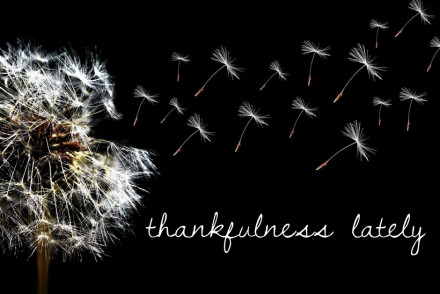 Thankfulness Lately | InspiredRD.com