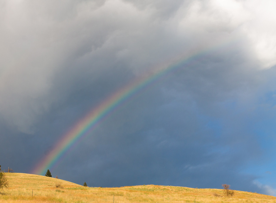 Going back to Montana - Frequently Asked Questions | InspiredRD.com